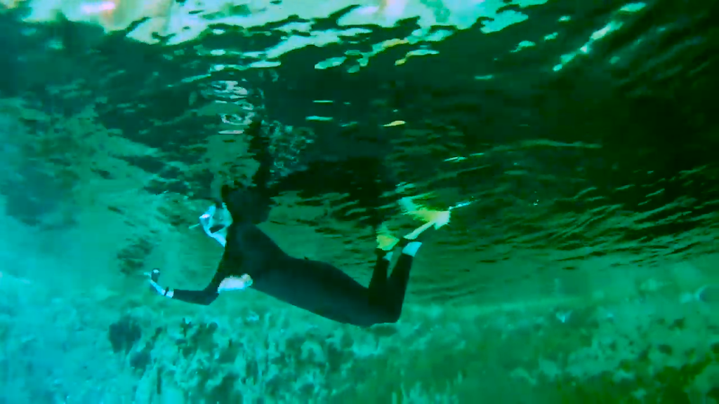 The Underwater World of Mexico:  Part 1: SCUBA and Cenotes